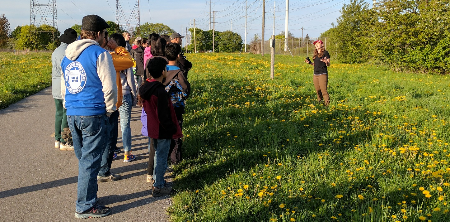 community group tours The Meadoway with TRCA staff member