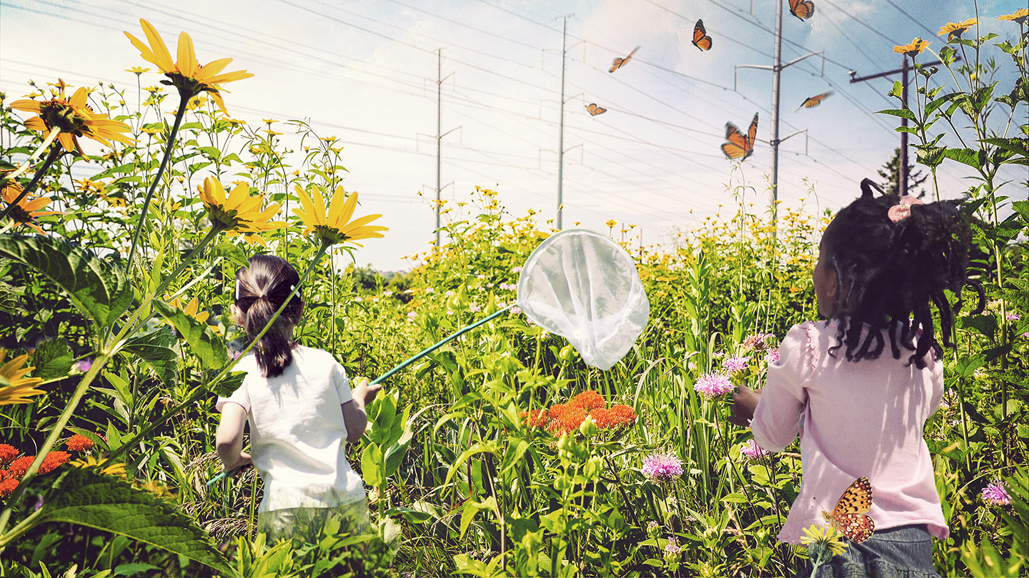 artist rendering of children with butterfly nets exploring The Meadoway