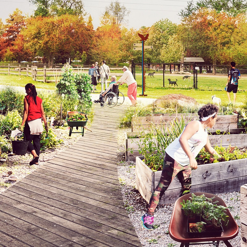 conceptual rendering of urban agriculture in The Meadoway