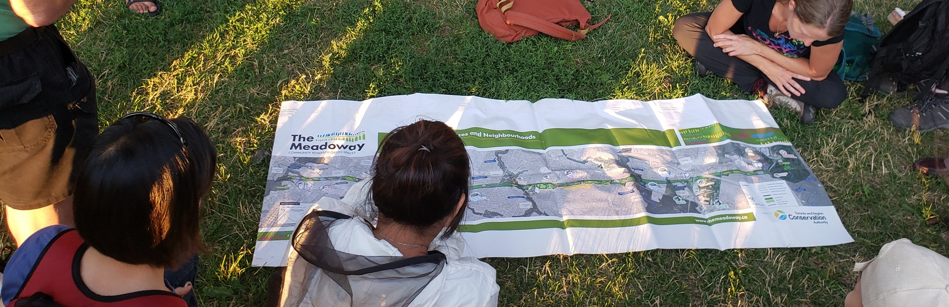 members of public examine map of The Meadoway at community learning event