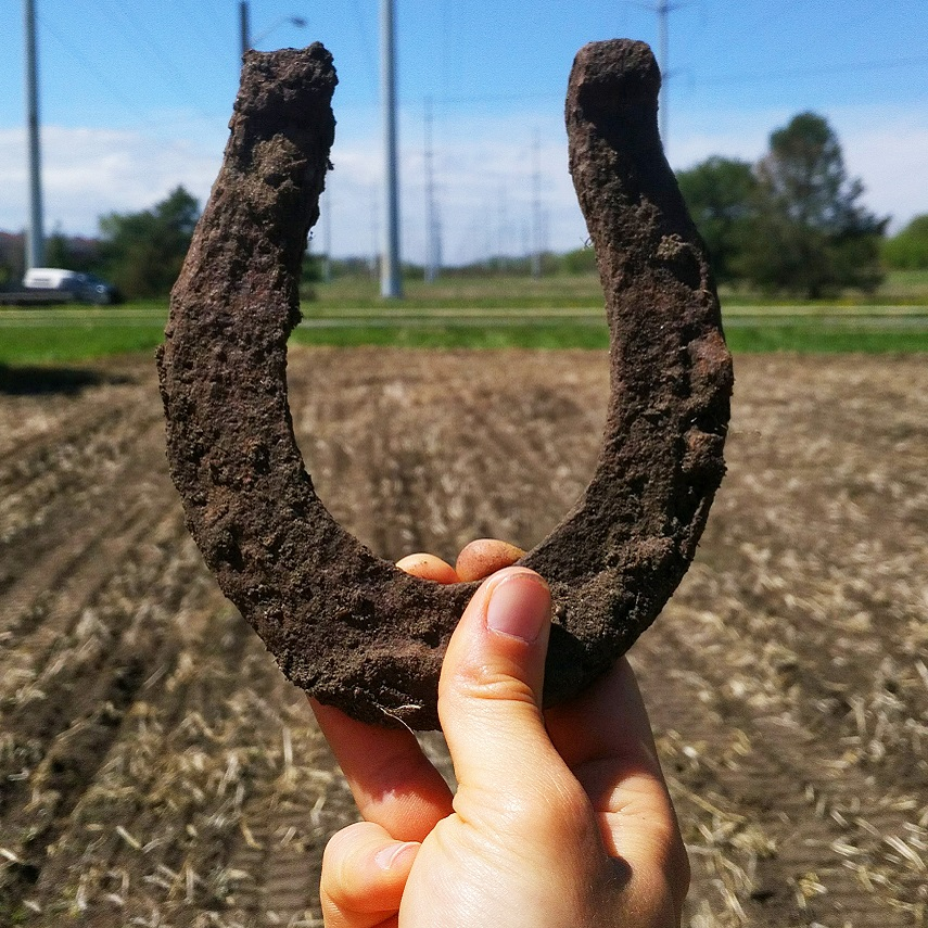 horseshoe unearthed during restoration work in The Meadoway