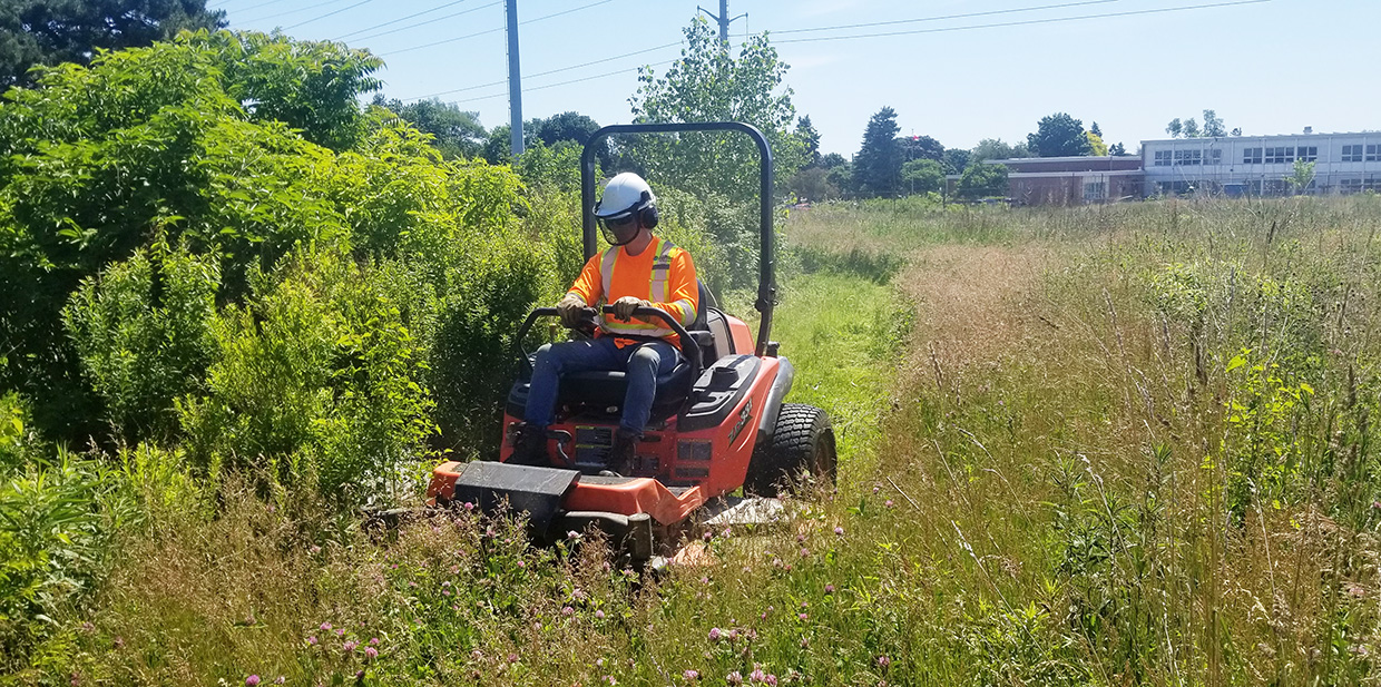 TRCA restoration team member riding power mower cuts a buffer between meadow and shrub nodes