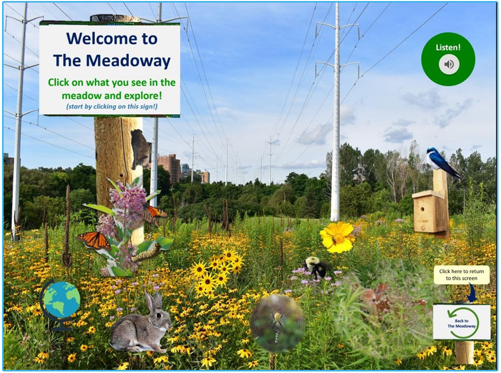 The Meadoway e-Learning resource for grades 1 to 6