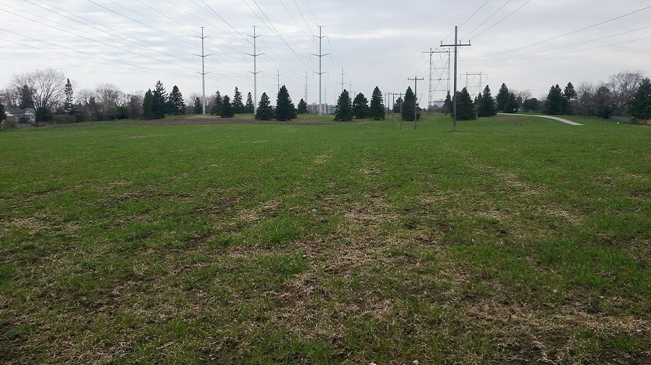 section of The Meadoway west of Bellamy Road in 2013 before meadow restoration